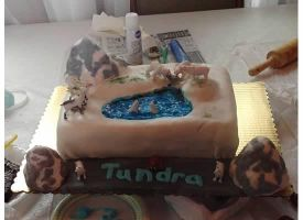 Tundra Cake by Kate078