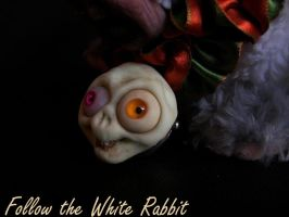 White Rabbit Detail by RobertaScalvini