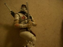 Silent Interlude Storm shadow by lovefistfury