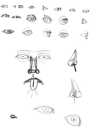 Eye and nose attempts 1 by myselfami