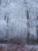 Ice 6 by SteviousStock