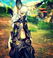 Blade and soul by Elidha