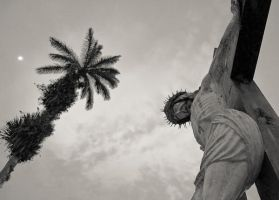 Crown of Thorns by scastor