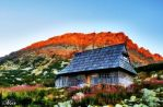 Cottage at Red Mountain by miirex