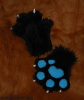Dacorin's Paws by Wolfbird