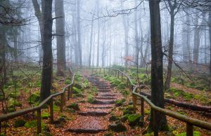 Stairway to nowhere by aw-landscapes