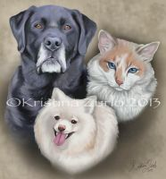 Pet portraits Commission by NatsumeWolf