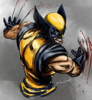 Wolverine / claws by NhtgkcN