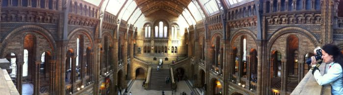 The National History Museum by Belafon