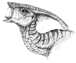 Parasaurolophus by LycanthropeHeart
