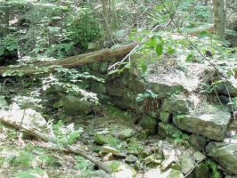 A Wall in the Woods 2 by MorganCG