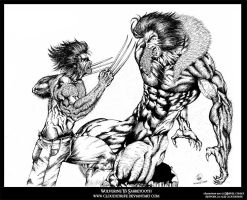 Wolverine Vs Sabretooth by CloudXtrife