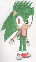 Manic the Hedgeghog by ShadowRules4ever