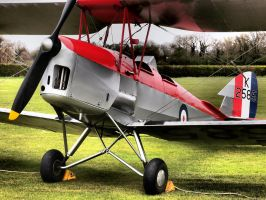 Tiger Moth - Old Warden by davepphotographer