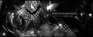 Spiderman BW by dallon113