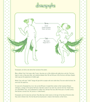 Draenymph - Information Page by Nyanfood