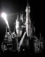 Cinderella's Castle by twrl11