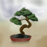 Bonsai by Benalene