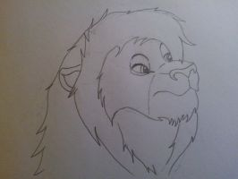 Name my tlk character? WIP by Writerinhiding