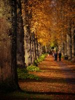 autumn stroll by adamlack