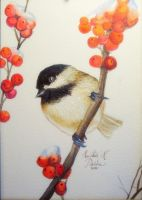 Winterberry Chickadee by heatherkparks