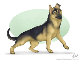 German Puppy -com by tailfrost