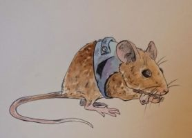 Mouse in waistcoat by BecciES