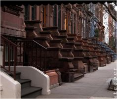 Deck of Stoops by steeber