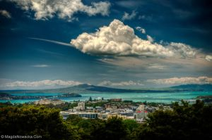 Auckland by schelly