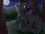 Darkclaw and Rosefang by CascadingSerenity