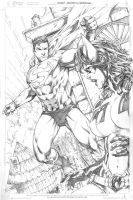 Superman_Huntress by MARCIOABREU7