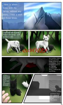 Project 09 Page 1 by Kireya