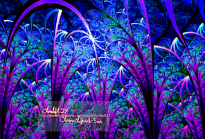 elliptic  midnight garden of delight by loreleft27