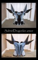 armor by TIMECON