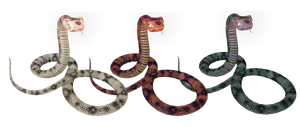 Snake all by aimt5000