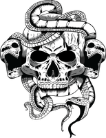 Skull Illustration by ArrtMan