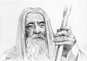 Gandalf Lord of the Rings Sketch Card by Stungeon