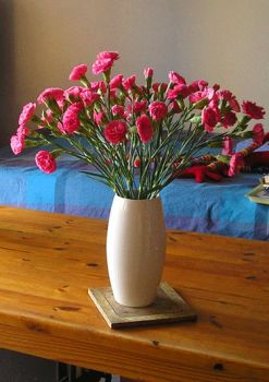 my carnations by Silana2a