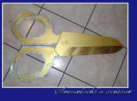 Souseiseki scissor by lilie-morhiril