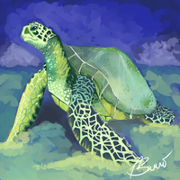 Sea Turtle by Psylla