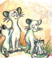 Cat Family by DupleSnowflake