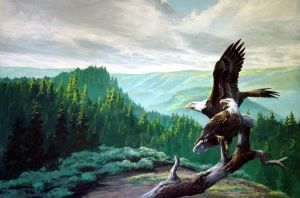 backyard eagles by LowellSSmithART