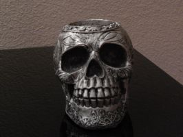 Skull 003 by diphylla