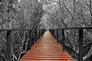 Oh Allah, lead us to the righteous path... by MAK-Photographi