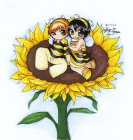 Sunflower : Buzz buzz by sukini