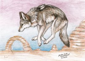 Canis Latrans by NatsumeWolf