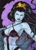 Shadow Lass Sketch Card by tonyperna