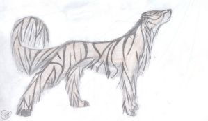 Shard The Striped Saber by Did2009