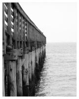 Fishing Pier by Cre8ivMynd