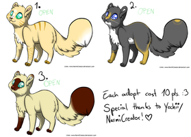 Cat Adoptables :ONE LEFT: by AmieAdot